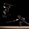 La canne de combat, un sport esthétique