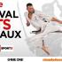 L'ASCA présente le bâton français et la canne de combat au 33ème Festival des Arts Martiaux AccorHotels Arena